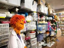 A puppet and supplies